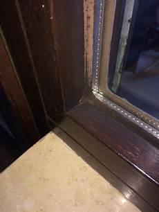 Wie Kann Schimmel An Fugen Holzfenstern Entfernen