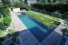 schwimmteich selber bauen schwimmteich selber bauen was sie unbedingt wissen m 252 ssen