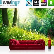 Fototapeten Kaufen - vlies fototapete premium plus 400x280cm forest by