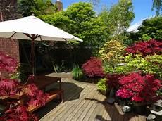 bankirai terrasse reinigen bankirai terrasse reinigen 187 schonend und effizient