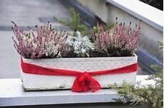 blumenkästen dekorieren winter blumenkasten deko f 252 r den winter 187 sch 246 ne ideen zum nachahmen
