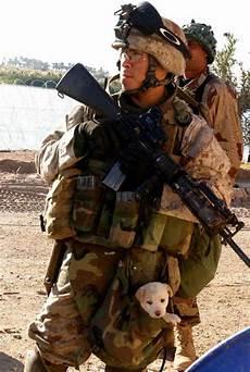 Picture Bukan Sekadar Gambar Koleksi Gambar Askar Yg