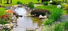 water garden algae control hollywood fish farm