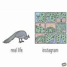 Gambar Ilustrasi Kehidupan Dan Artinya Hilustrasi