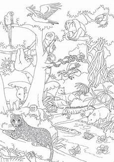 Malvorlagen Urwald 94 Neu Ausmalbilder Tiere Im Dschungel Galerie Kinder Bilder