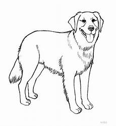 labrador retriever drawing at getdrawings free
