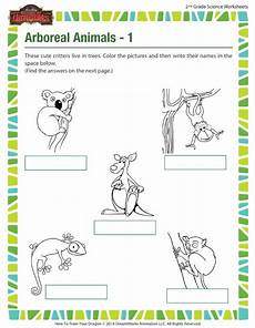 science worksheets about plants for grade 1 12109 arboreal animals 1 view worksheet 2nd grade sod