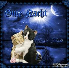 dreamies de sost8ygl2cq gif mit bildern gute nacht