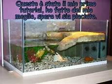 vasche x tartarughe d acqua tutorial come costruire una tartarughiera