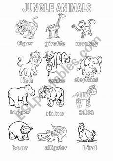 jungle animal worksheets 14319 jungle animals coloring sheet esl worksheet by shannoncronin