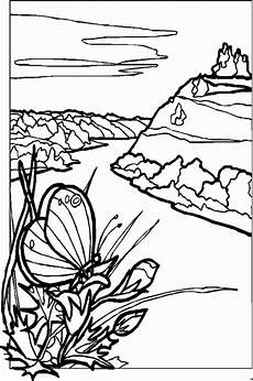 malvorlagen landschaften gratis und original schmetterling auf pflanze ausmalbild malvorlage