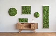 moosbilder für die wand moos und pflanzenw 228 nde ohne pflege und folgekosten