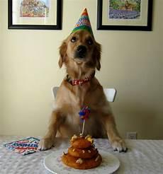 Birthday Birthday Colorful Birthday