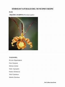 simbolos naturales del municipio alberto adriani simbolos naturales del municipio crespo nueces y semillas comestibles plantas medicinales