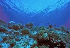 Temukan Pengertian Pengertian Dataran Laut Sangat Dalam