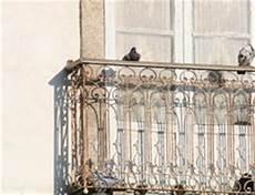 tauben balkon fernhalten gel 228 nder f 252 r au 223 en