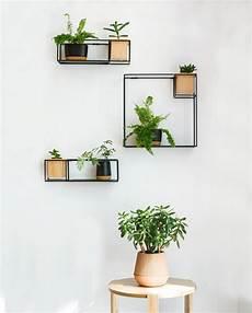 Beautiful Floating Shelf With In Built Planter product of the week beautiful floating shelf with inbuilt