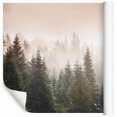 wandtapete wald fototapete vlies tapete xxl wandtapete natur wald im nebel