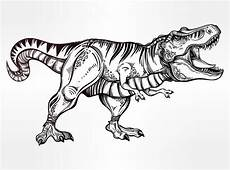Ausmalbilder Dinosaurier Fleischfresser Tyrannosaurus Dinosaur Vector Illustration Stock Vector