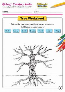 science plants ks1 worksheets 13580 ks1 science plants tree facts by rubytuesdaybooks teaching resources tes trees to plant