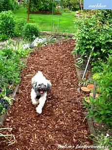 Garden Path With Bark Mu Gartenweg Mit Rindenmulch