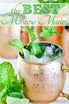 the best moscow mule recipe ask anna