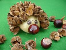 Get Crafty Make A Hedgehog With Tree Seeds And Cases