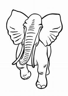 Ausmalbilder Afrikanischer Elefant Ausmalbilder Alter Afrikanischer Elefant Elefanten