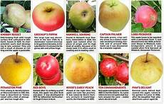 local orchards helping to bring back forgotten apple types