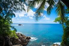 free images sea coast tree ocean summer vacation
