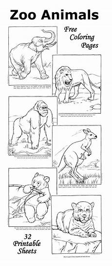 zoo animals coloring sheets 17463 zoo coloring pages facts with each zoo animal picture coloring pages