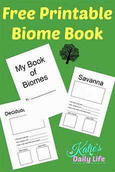 s daily life homeschooling care giving and reviewing biomes worksheets