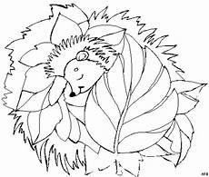 igel schlaeft im blaetterbett ausmalbild malvorlage tiere