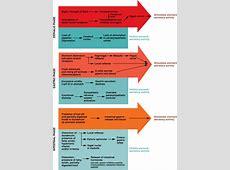 cephalic phase response