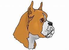 malvorlage malteser hund kinder zeichnen und ausmalen
