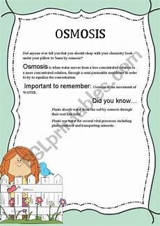 osmosis esl worksheet by vmarianoel