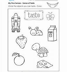 5 senses worksheets tasting 12611 the human the 5 senses worksheets a wellspring