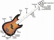 Bass Guitars Mdwsupport