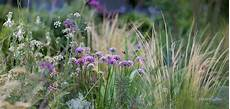Beet Mit Gräsern Und Stauden - gartenblog geniesser garten staudenbeet planen und anlegen