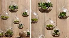 plante suspendue verre jardini 232 res et suspensions 20 inspirations pour le