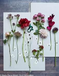10 fleurs pour 3 bouquets d automne d 233 coration