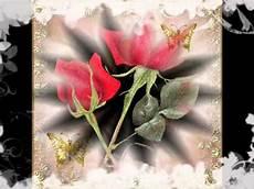 ca fiore un fiore per te