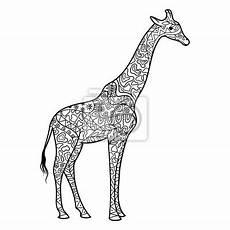 Ausmalbilder Erwachsene Giraffe Giraffe Zeichnung Schwarz Weiss