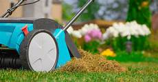 Rasen Vertikutieren Wann Wozu Mehr Vom Garten