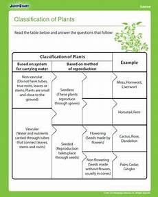 plants and animals worksheets for grade 4 13508 classification of plants nats worksheets plants