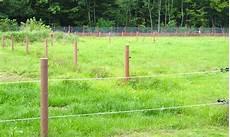 clotures electriques pour animaux cloture bois resistant vent