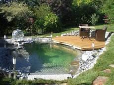 Schwimmteich Oder Pool - schwimmteich im eigenen garten vorteile einrichtungsiden