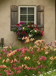 fioriere per davanzale finestra my world of colour talesfromcarmel logi