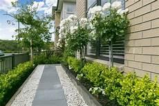Pflegeleichter Vorgarten Mit Fr 252 Nen Pflanzen Garten