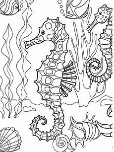 sea animals coloring pages 17060 dover publications sle page from the sea adventure coloring book seahorse animal